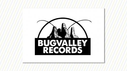 logo_bug-valley-records